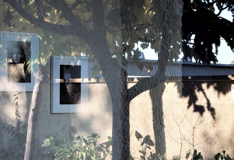 Villa Noailles Hyères Les Palmiers