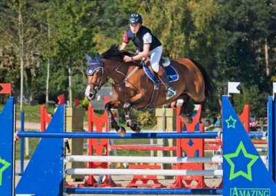 Amazing Show Jumping Collectif Image